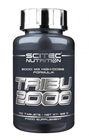 Tribu 2000 70 Tabs