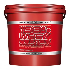 Whey Protein Professional 5000G