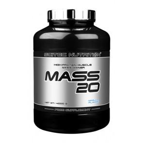 Mass 20 4000g
